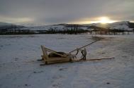 Sami Reindeer Sledding in Tromsø - 23